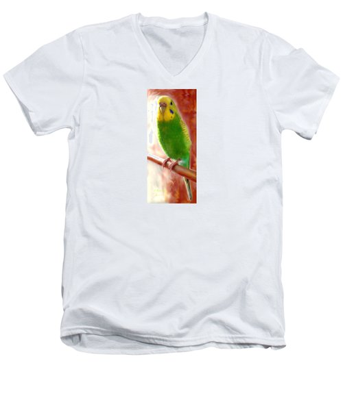 Cricket's Official Portrait Men's V-Neck T-Shirt