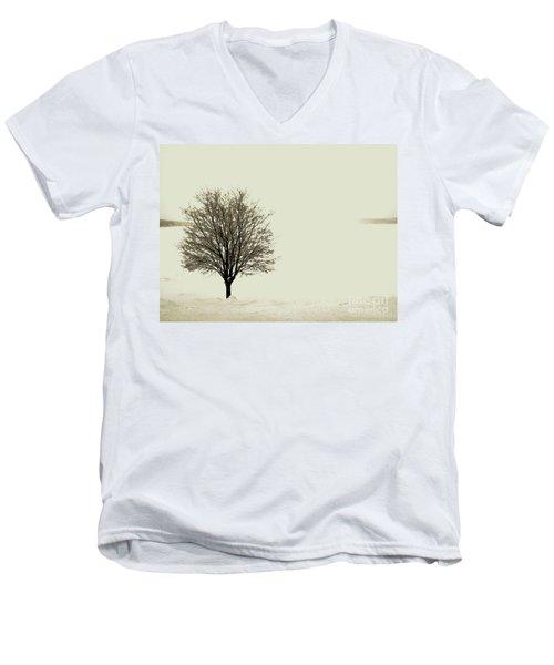 Crystal Lake In Winter Men's V-Neck T-Shirt by Desiree Paquette