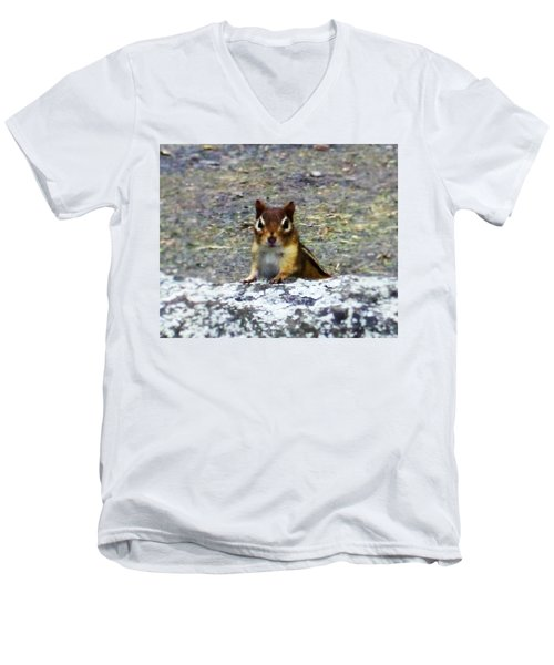 Curious Chipmunk Men's V-Neck T-Shirt
