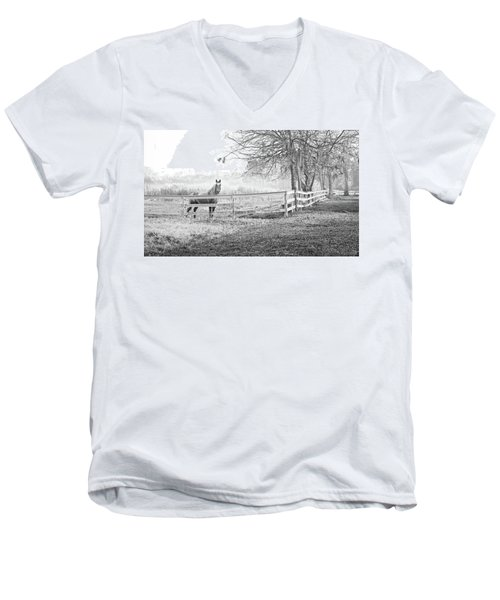 Curious Fog Men's V-Neck T-Shirt