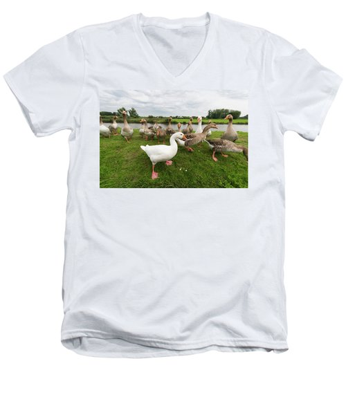 Curious Geese Men's V-Neck T-Shirt by Hans Engbers
