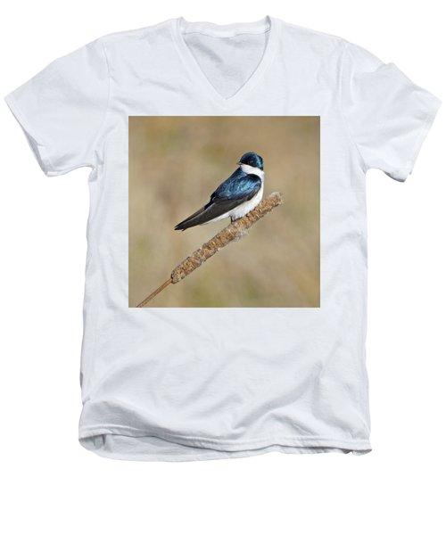 Cushy Perch Men's V-Neck T-Shirt by Stephen Flint
