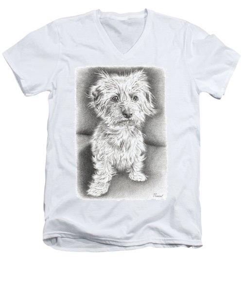 Dachshund Maltese Men's V-Neck T-Shirt