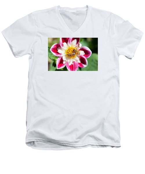 Dahlia Bee Buffet Men's V-Neck T-Shirt