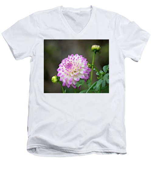 Dahlia Flower Men's V-Neck T-Shirt