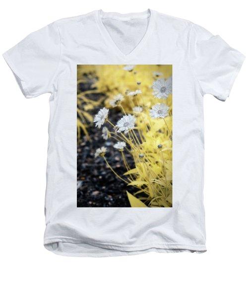 Daisey Men's V-Neck T-Shirt by Paul Seymour