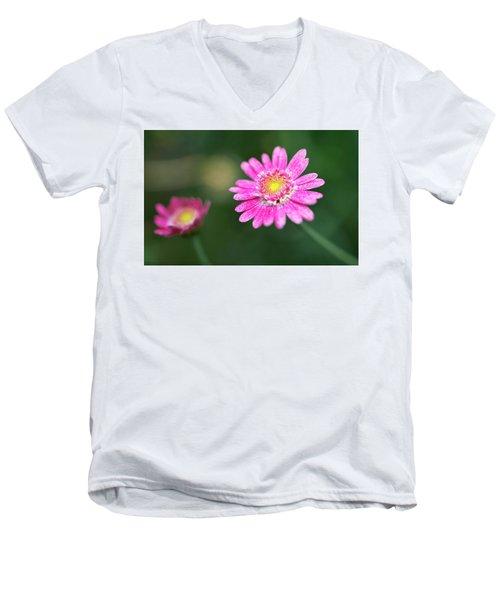 Daisy Flower Men's V-Neck T-Shirt