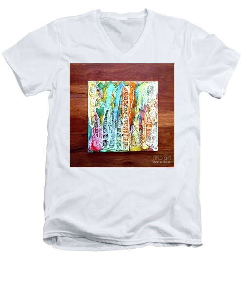 Danxia Water Falls Men's V-Neck T-Shirt by Alene Sirott-Cope