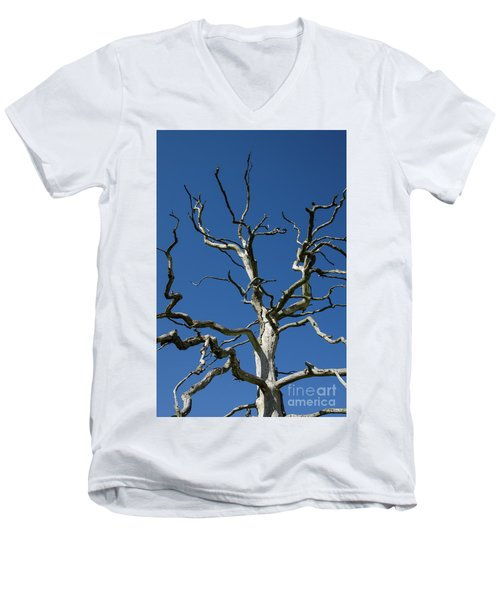 Dead Oak Tree Men's V-Neck T-Shirt