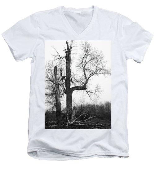 Dead Tree Ten Mile Creek Men's V-Neck T-Shirt