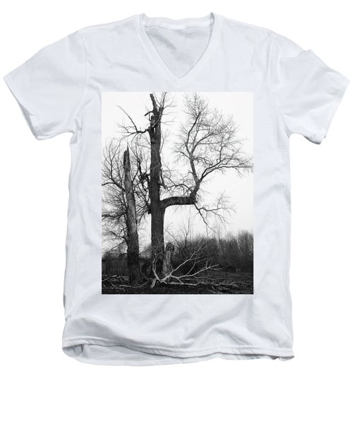 Dead Tree Ten Mile Creek Men's V-Neck T-Shirt