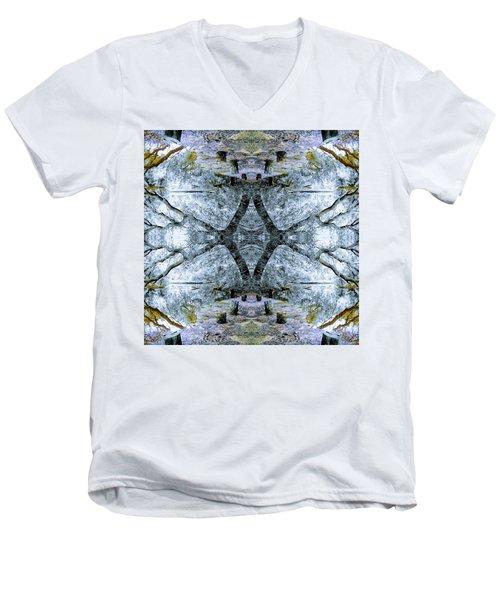 Deciduous Dimensions Men's V-Neck T-Shirt