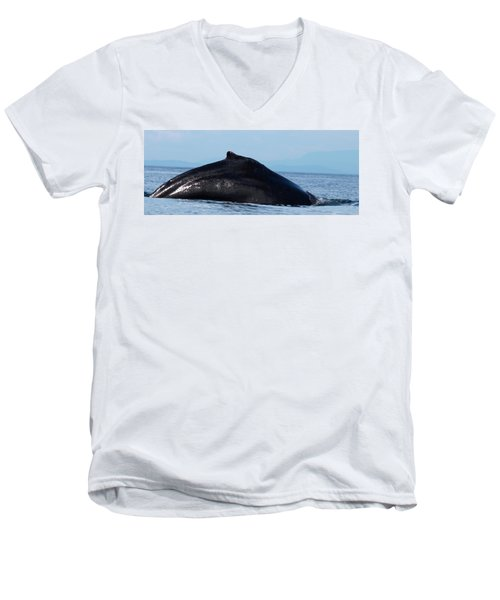 Deep Dive Men's V-Neck T-Shirt