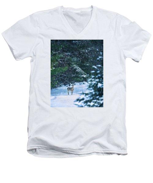 Deer In A Snowy Glade Men's V-Neck T-Shirt by Diane Diederich