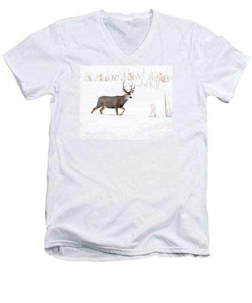 Men's V-Neck T-Shirt featuring the photograph Deer In The Snow by Rebecca Margraf