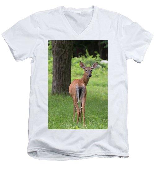 Deer Looking Back Men's V-Neck T-Shirt