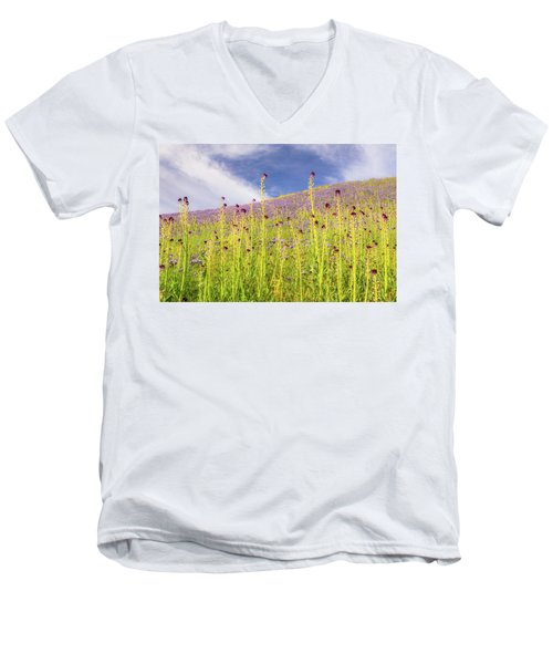 Desert Candles At Carrizo Plain Men's V-Neck T-Shirt