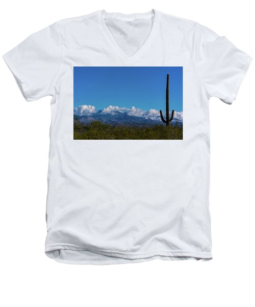 Desert Inversion Cactus Men's V-Neck T-Shirt