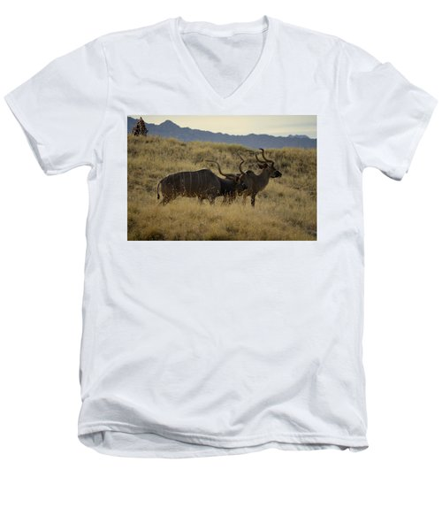 Men's V-Neck T-Shirt featuring the photograph Desert Palm Landscape by Guy Hoffman