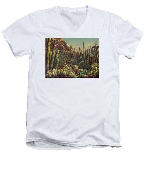 Desert Potpourri  Men's V-Neck T-Shirt by James Larkin