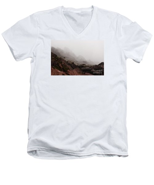 Men's V-Neck T-Shirt featuring the photograph Still Untouched By Men by Dana DiPasquale