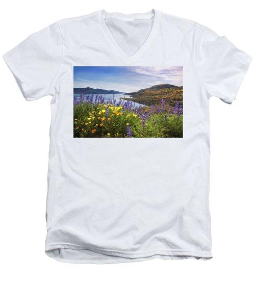 Diamond Valley Men's V-Neck T-Shirt