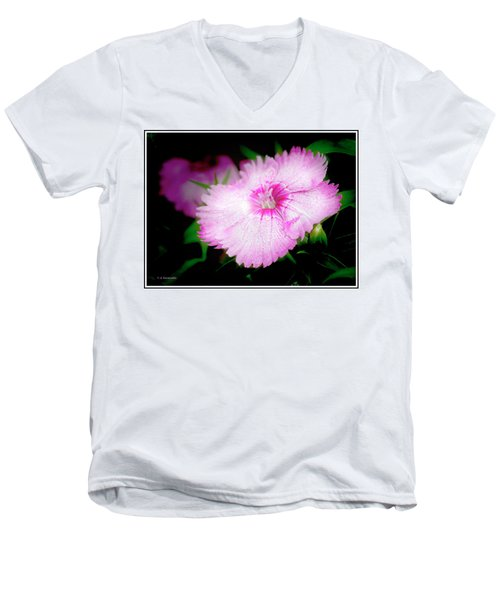 Dianthus Flower Men's V-Neck T-Shirt