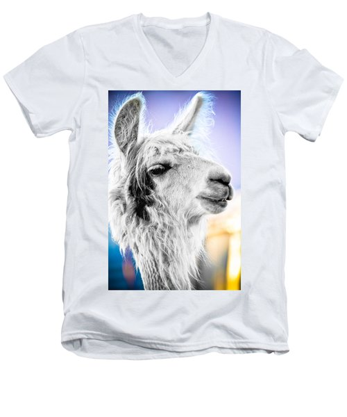 Men's V-Neck T-Shirt featuring the photograph Dirtbag Llama by TC Morgan