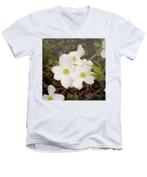 Dogwood Blossom Trio Men's V-Neck T-Shirt