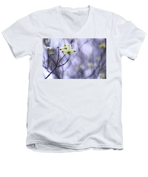 Dogwood Men's V-Neck T-Shirt by Tammy Schneider