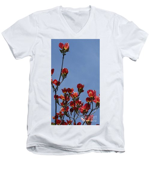 Men's V-Neck T-Shirt featuring the photograph Dogwood by Victor K