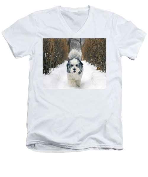 Doing The Dog Walk Men's V-Neck T-Shirt by Keith Armstrong