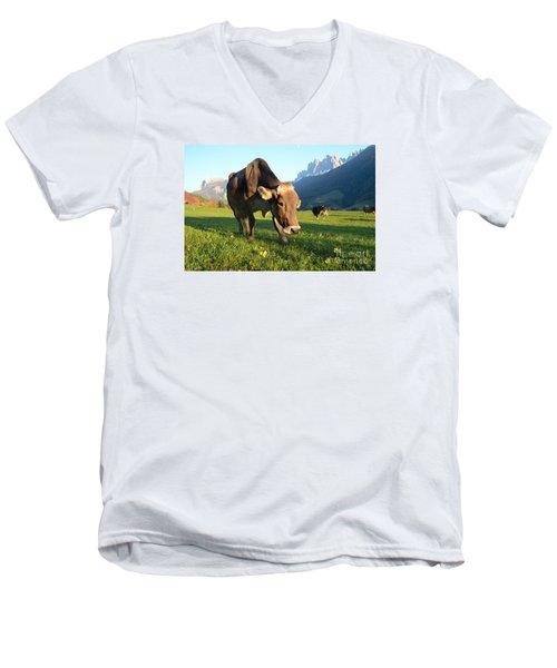 Dolomites Mountain Cow Close-up Men's V-Neck T-Shirt by IPics Photography