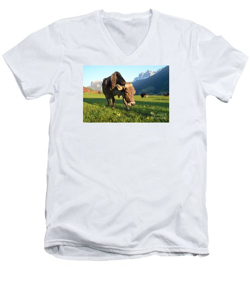 Dolomites Mountain Cow Close-up Men's V-Neck T-Shirt