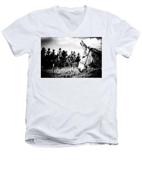Donkey Men's V-Neck T-Shirt