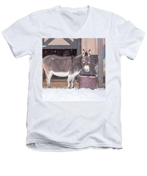 Donkey Watching It Snow Men's V-Neck T-Shirt