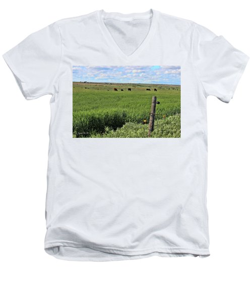 Don't Fence Me In Men's V-Neck T-Shirt by Sylvia Thornton