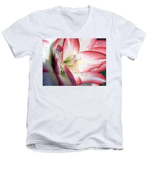 Double Amaryllis Men's V-Neck T-Shirt
