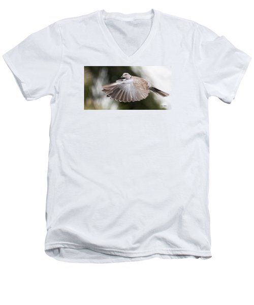 Men's V-Neck T-Shirt featuring the photograph Dove Flight by Don Durfee