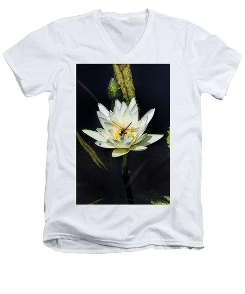 Dragon Fly On Lily Men's V-Neck T-Shirt