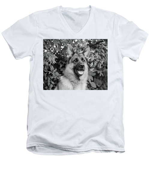 Men's V-Neck T-Shirt featuring the photograph Drake Watching by Sandy Keeton