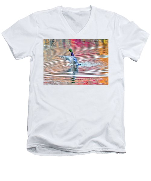 Duck On An Autumn Pond In The Chesapeake Bay Maryland Men's V-Neck T-Shirt