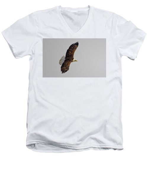 Eagle In Flight Men's V-Neck T-Shirt