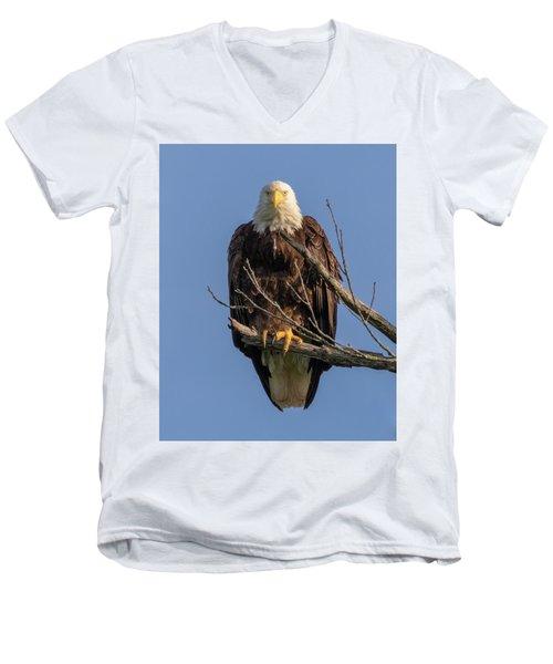 Eagle Stare Men's V-Neck T-Shirt