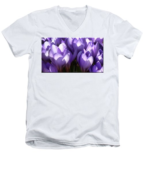 Early Crocus Men's V-Neck T-Shirt by Mikki Cucuzzo
