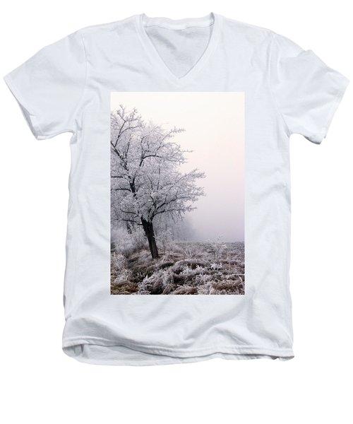 Early Morning Frost  Men's V-Neck T-Shirt