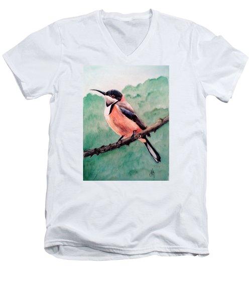 Eastern Spinebill Men's V-Neck T-Shirt