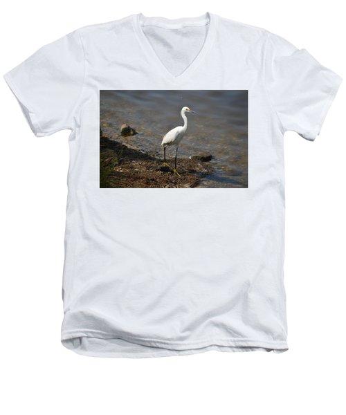 Egret 1 Men's V-Neck T-Shirt by Gordon Mooneyhan