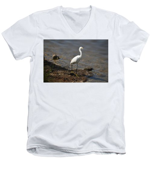 Egret 1 Men's V-Neck T-Shirt