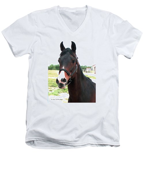 El Ameer Men's V-Neck T-Shirt by Joan Hartenstein